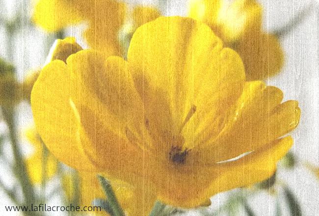 Fotografia unei flori de aur cu un strat de textură din lemn